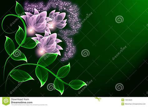imagenes jpg transparentes fleurs transparentes photos stock image 13910623
