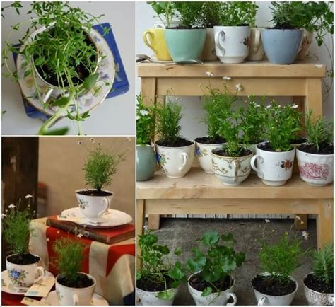 Herb Garden Layout Ideas 24 Indoor Herb Garden Ideas To Look For Inspiration Balcony Garden Web