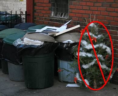christmas tree recycling program 2012