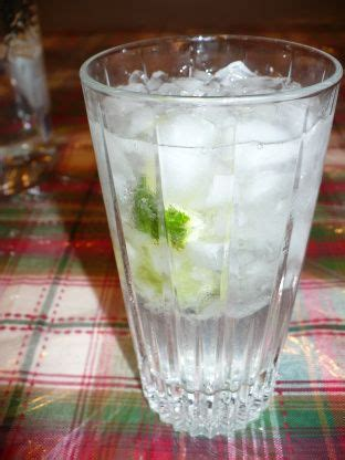 vodka tonic recipe 1000 ideas about vodka tonic on vodka tonic