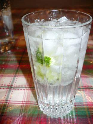 vodka tonic recipe 1000 ideas about vodka tonic on vodka tonic