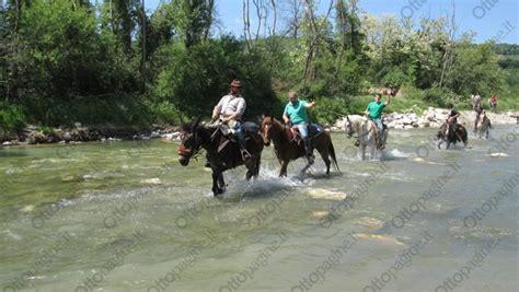 sella avellino 8 maggio a cavallo e in sella c 232 anche carletto