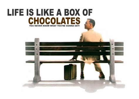water    box  chocolates  travel psychologist
