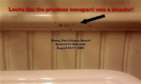 disney port orleans riverside bed bugs disney s dirty little secret disney s port orleans