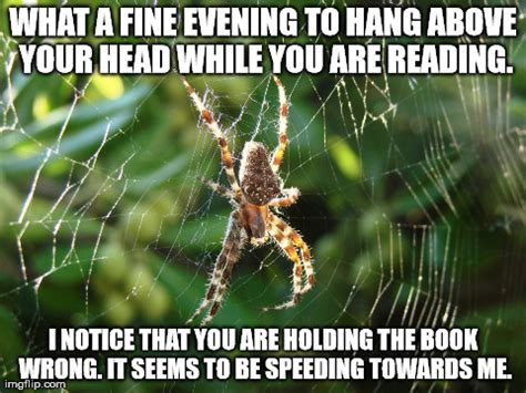 Spider Memes - 21 diseases the doctors haven t figured out yet