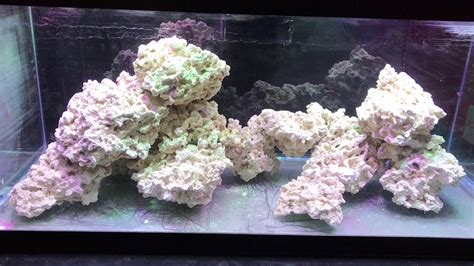 Reef Aquascape by Aquascaping The 75 Gallon Reef Tank