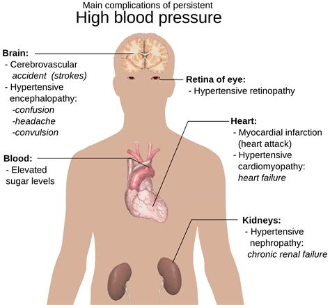 What Could Be The Cause Of Blood In Your Stool by How Stress Minerals And Sugar Affect Your Blood Pressure