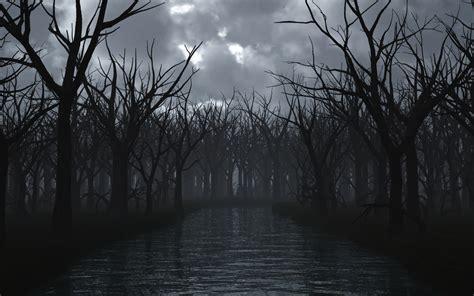 wallpaper dark tree dark tree 63 wallpapers hd desktop wallpapers
