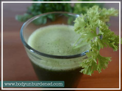 Cilantro And Chlorella Detox Recipe by The Green Magnet Heavy Metal Detox Drink