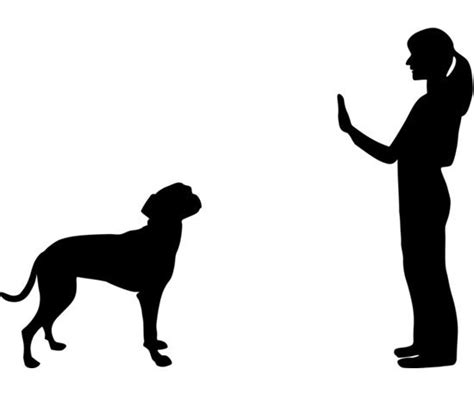 stay essential signals for dogs popsugar pets photo 4