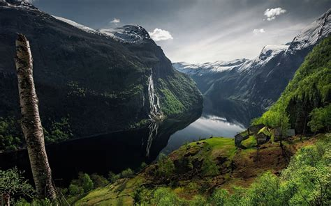 nature landscape fjord canyon mountain trees