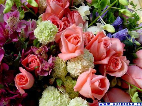 foto hd fiori wallpaper fiori 58 wallpaper in alta definizione hd