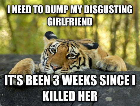 Terrible Tiger Meme - livememe com terrible twist tiger