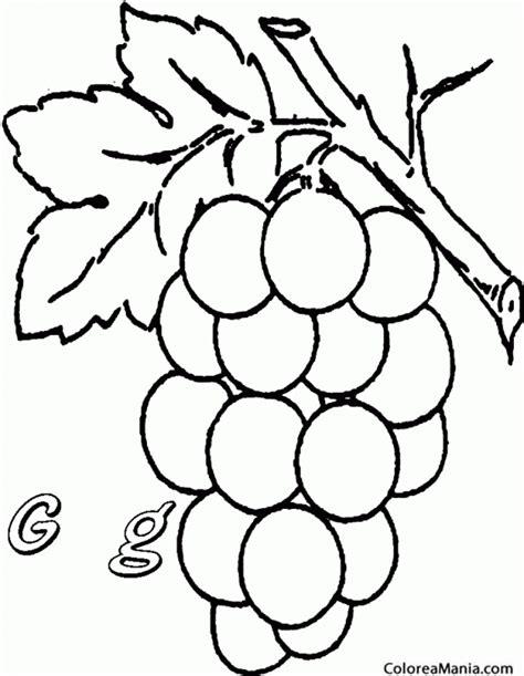 imagenes de uvas a color para imprimir colorear uvas grapes frutas dibujo para colorear gratis