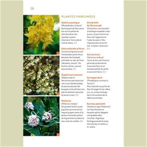 Supérieur Jardin A L Ombre Que Planter #4: queplanter-ombre-g1.jpg
