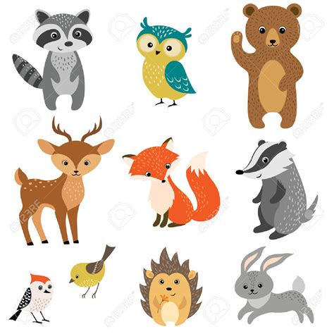 rainforest animal templates woodland background clipart 18