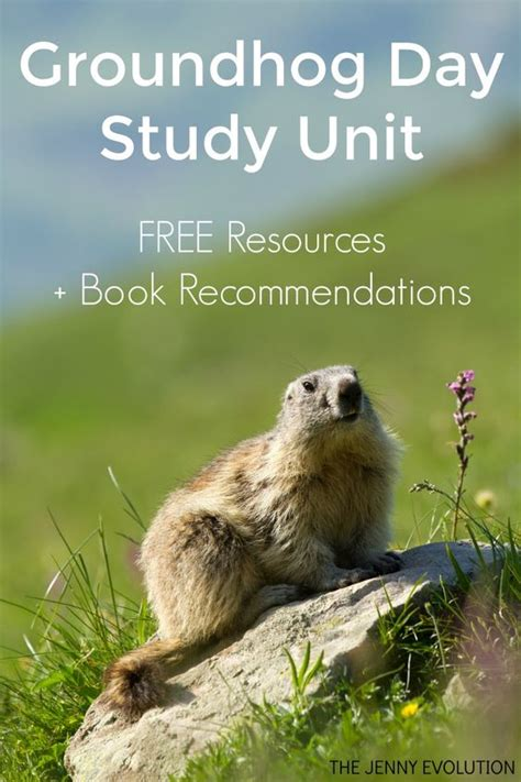 groundhog day novel groundhog day books for free study unit resources