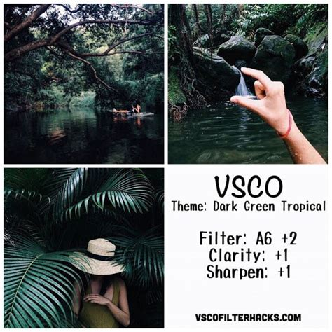 vsco nature tutorial dark green tropical instagram feed using vsco filter a6