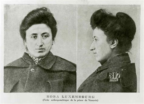 rosa a graphic biography of rosa luxemburg rosa luxemburg really