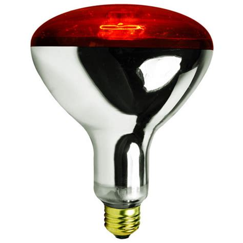 Heat L Light Bulb by Infrared Heat L Bulb From Pet Chicken