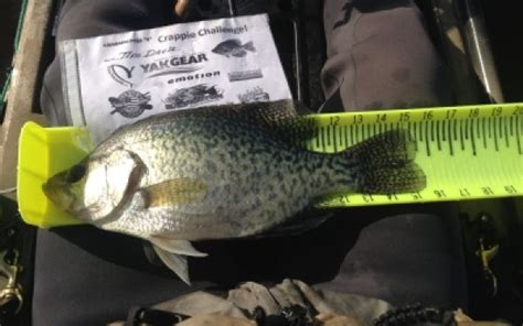 Noble County Indiana Records Crappie Black