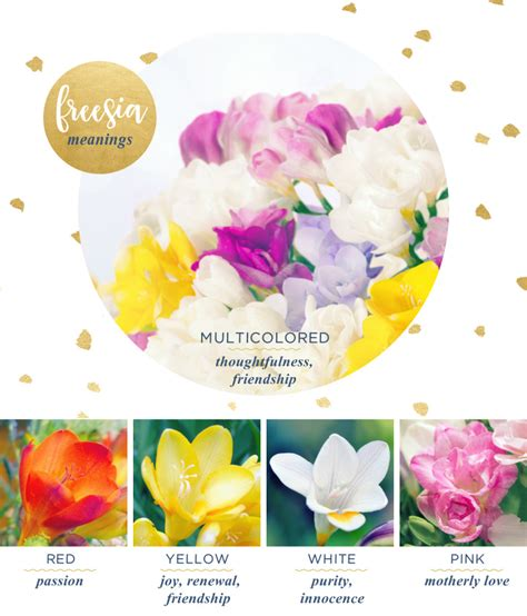what color represents friendship freesia meaning and symbolism ftd