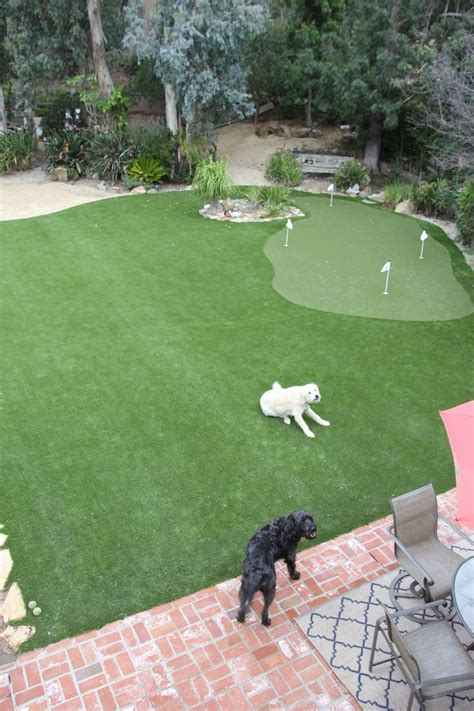 putting greens for backyards best 20 backyard putting green ideas on