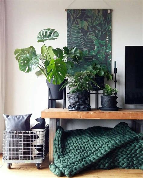 Forest Green Curtains Designs 17 Best Ideas About Forest Green Bedrooms On Pinterest Green Rooms Green Walls And