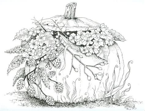 pumpkin coloring page for adults coloring for adults kleuren voor volwassenen colour my