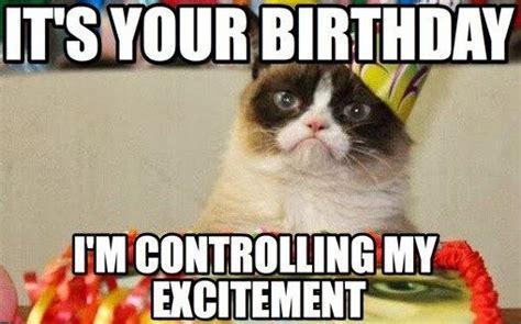 Cat Birthday Memes - cat memes happy birthday cat memes funny cat memes