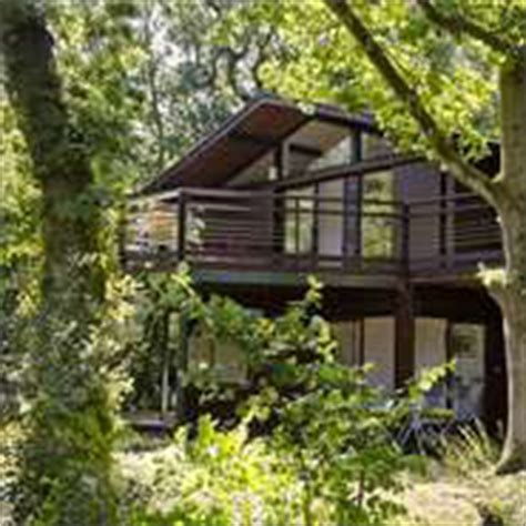 Self Catering Cottages In New Forest by New Forest Living Cottages