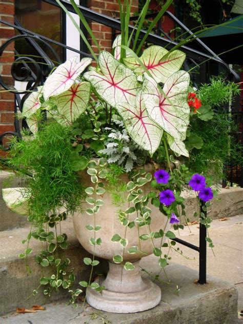 Flower Pot Arrangements For The Patio by Pin By Boyd On For The Home
