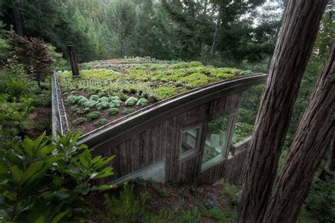 living roofs tucked in tiny house or office on the hillside what a