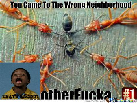 Ant Meme - rmx ant by recyclebin meme center