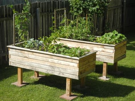 Cheap Raised Planters by Best 25 Cheap Raised Garden Beds Ideas On Box