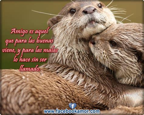 imagenes bonitas de amistad para compartir frases bonitas de amistad para compartir en facebook