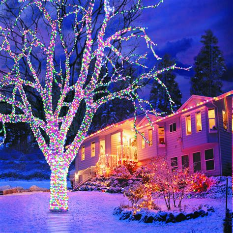 hanging outdoor christmas lights in trees outdoor christmas tree download wallpaper new year
