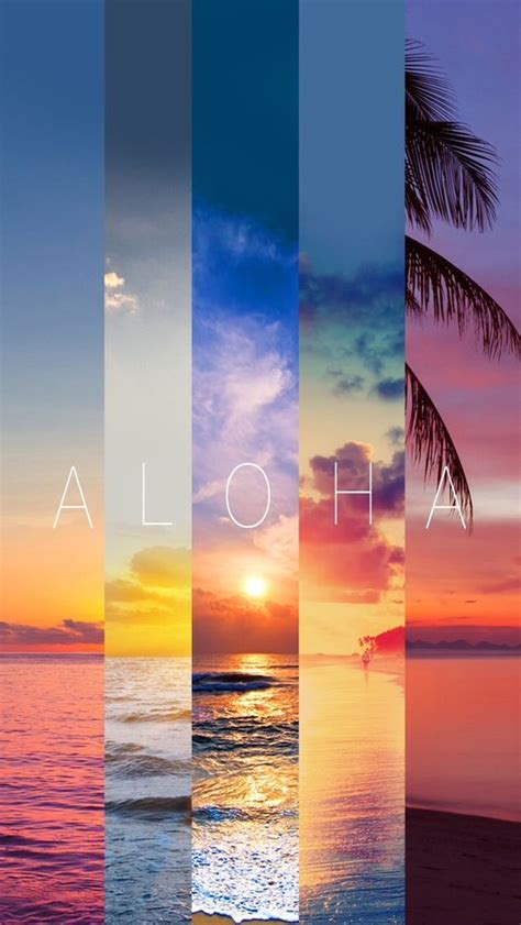 Summer Wallpapers For Mobile Phone