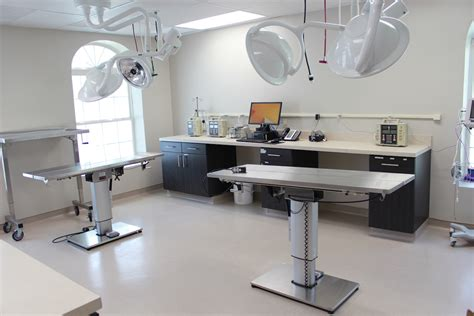 mount comfort animal hospital virtual tour red bank veterinary hospital