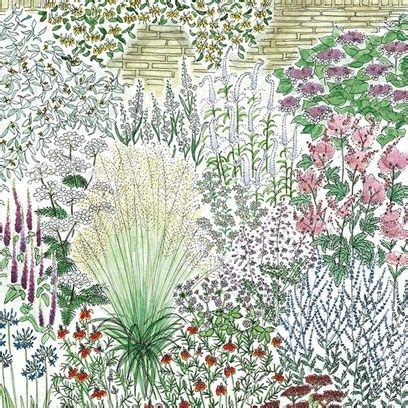 cottage garden border plan 10 ideas about herbaceous border on hill