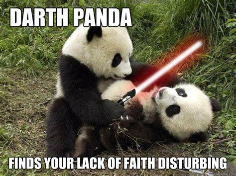 Memes De Pandas - panda memes google search cute pinterest panda