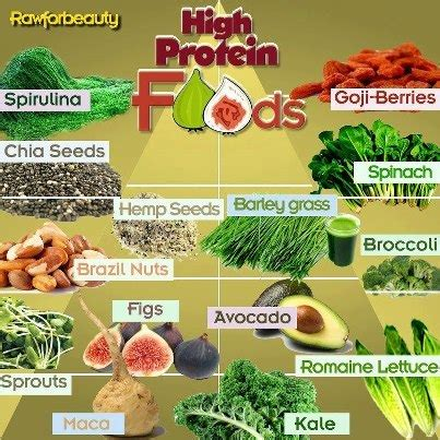 protein vegetables high protein vegetables