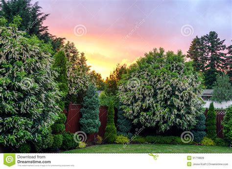 backyard sunset backyard sunset royalty free stock photos image 31718828