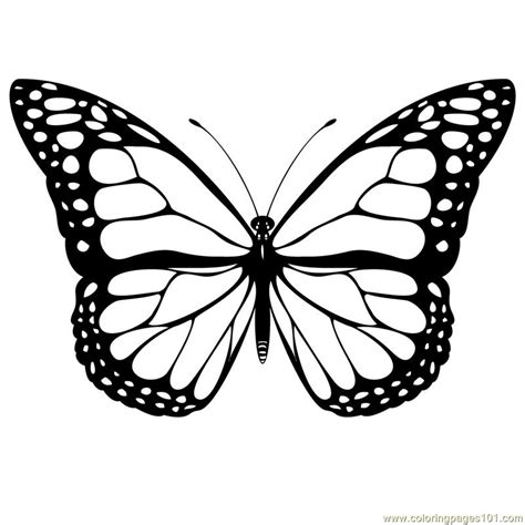 beautiful coloring pages of butterflies beautiful butterfly coloring page free butterfly