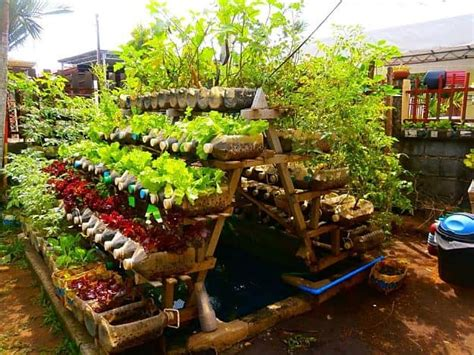 17 creative vegetable garden designs to inspire your