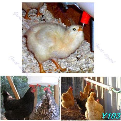 Alat Peternakan 5pcs Set Poultry Chicken Hen Automat gefl 252 gel werbeaktion shop f 252 r werbeaktion gefl 252 gel bei aliexpress