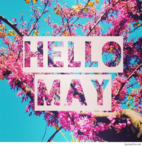 may day wallpaper hd wallpapers hello may quotes and pictures wallpapers hd