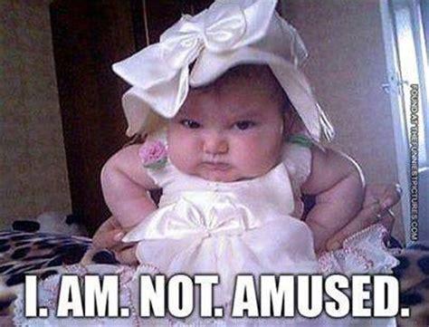 Not Funny Meme - baby memes not amused funny memes