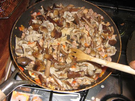 pioppini come cucinarli sedanini ai funghi chiodini