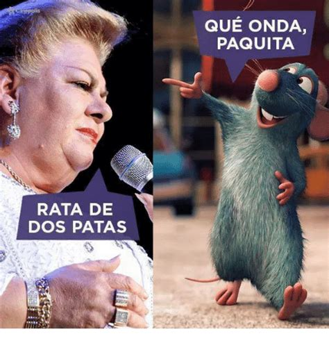 Rata De Dos Patas Meme - hepplis rata de dos patas que onda paquita meme on sizzle